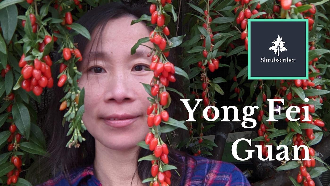 Shrubscriber Feature Member Yong Fei Guan