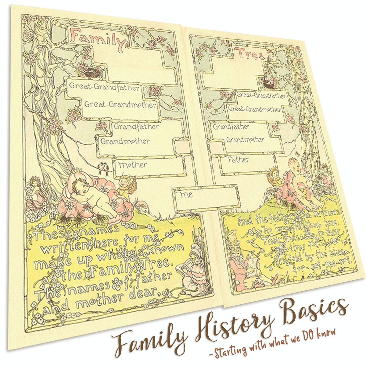 Family History Basics - Starting with what we DO know   The